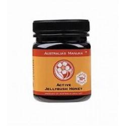 Active Jellybush Antibacterial Honey
